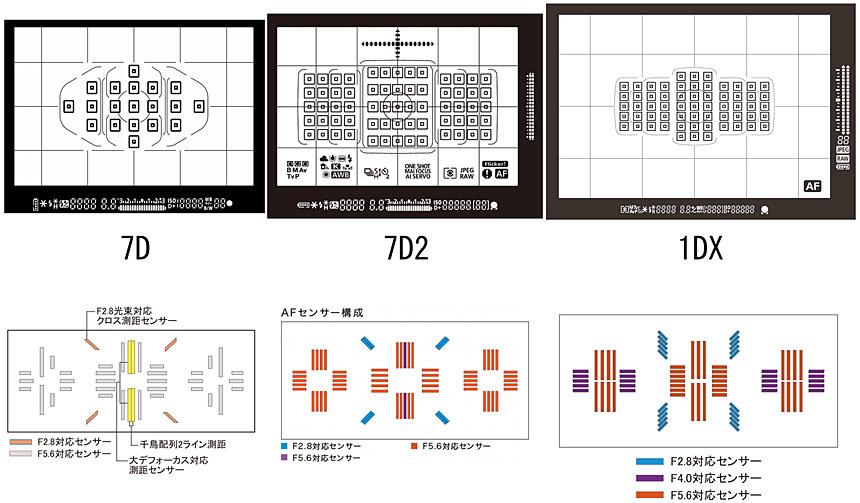 7D2-5-2.jpg