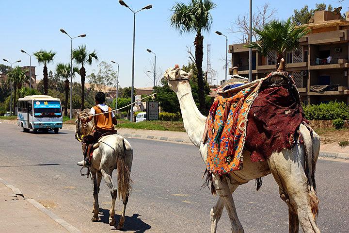 Egypt-2-12.jpg